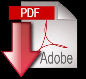 ecommerce pdf icon